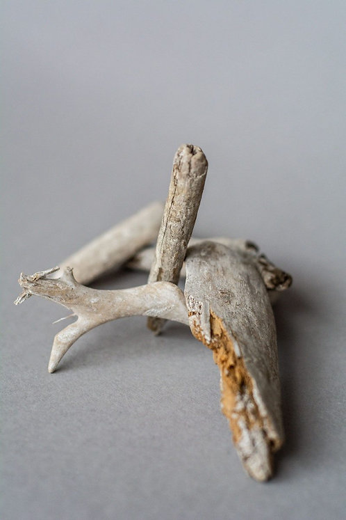 Blanched driftwood (5)