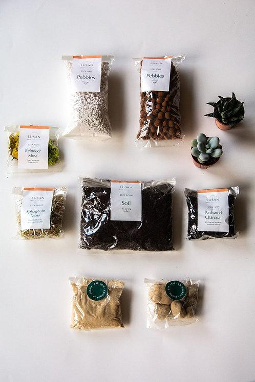 (Small) Succulent Terrarium Kit