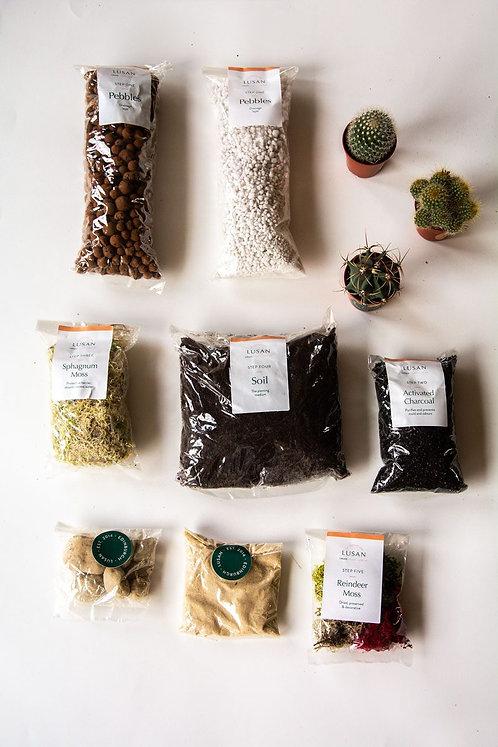 (Medium) Cactus Terrarium Kit