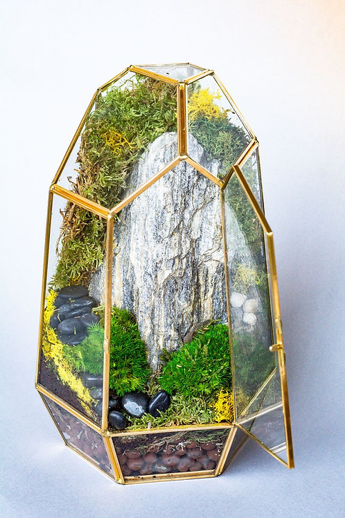 Geometric Terrarium with Live Mosses - No assembly required