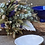 Thumbnail: Les Fleurs : Bouquet Bleu et léger