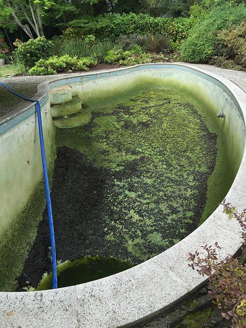 jGrow convert your pool