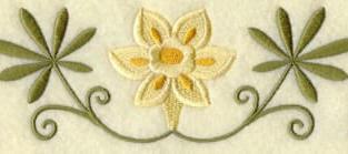 Daffolils border