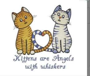 Angel Kittens