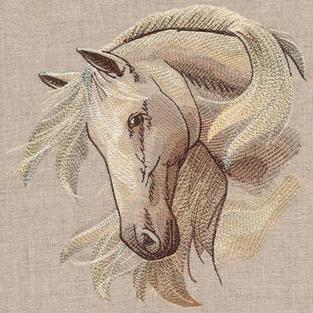 Windswept Stallion