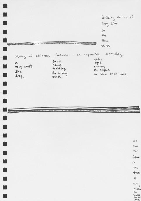dandelions-23-1.jpg