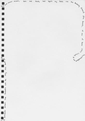 dandelions-7-1.jpg