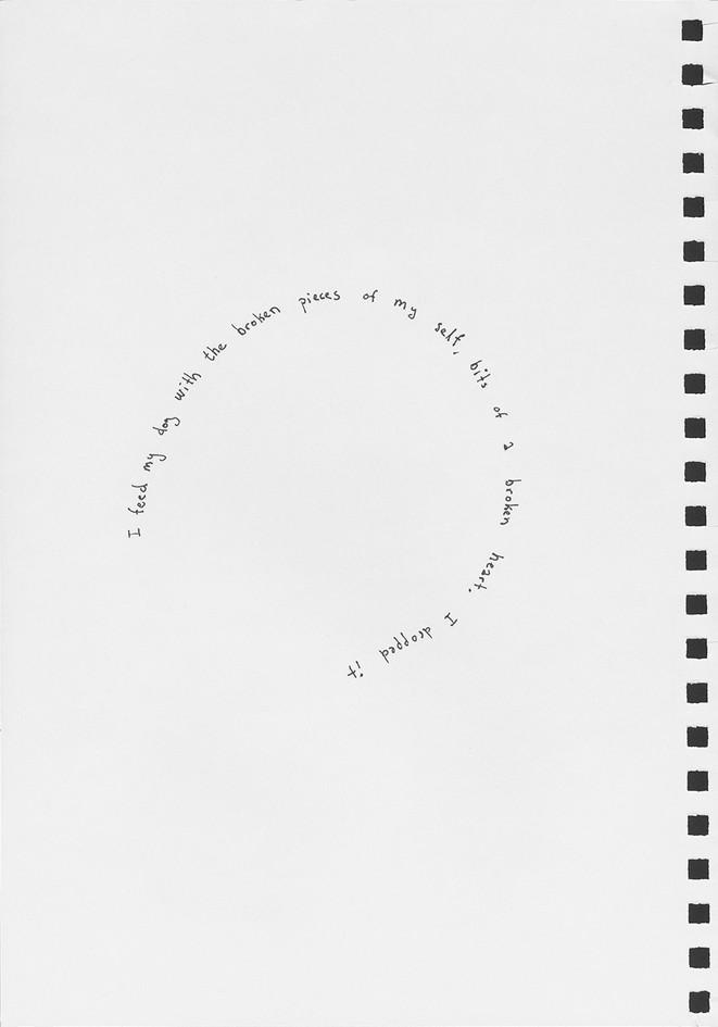 dandelions-14-1.jpg