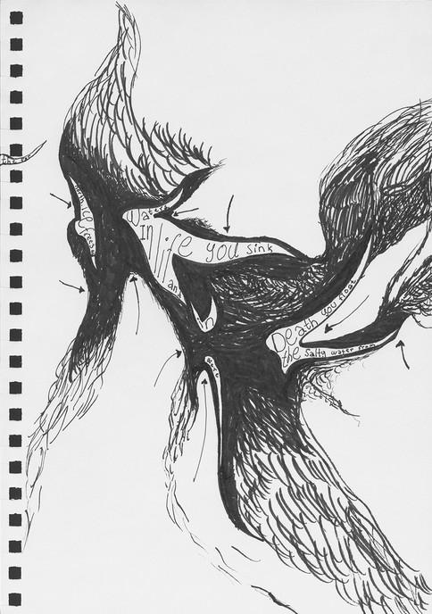 dandelions-9-1.jpg