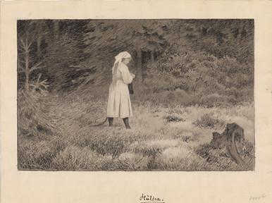 /// Material used in the research: Huldran by Theodor Kittelsen Foto: Nasjonalmuseet (CC BY-NC) From: https://www.isof.se/om-oss/for-dig-i-skolan/arkivvaskan/skogsraet-i-folktron.html