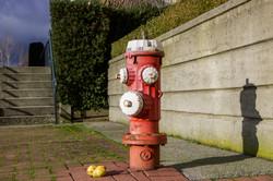 Fire Hydrant regression