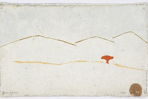 Desert Landscape with Acacia