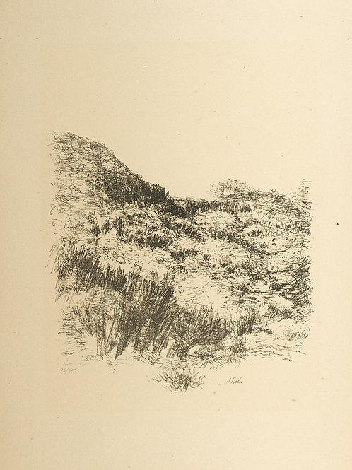 Judean Landscape