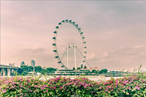 singapore-flyer-sunset-asia.jpg