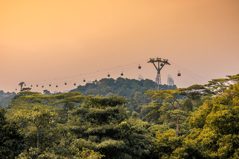 cable-cars-forest-sunset-sentosa-island-