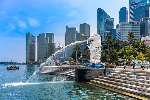 Street photograph of the Merlion Park with the Singapore skyline in the background