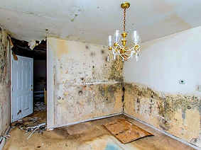 Insurance work undertaken to repair water damage