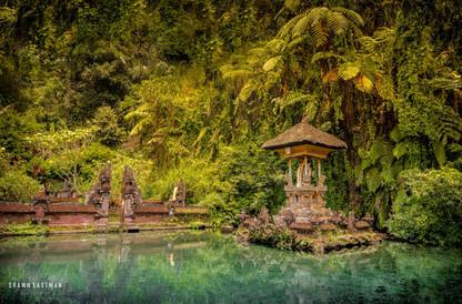 shrine-in-pond-gunung-kawi-forest-bali-i