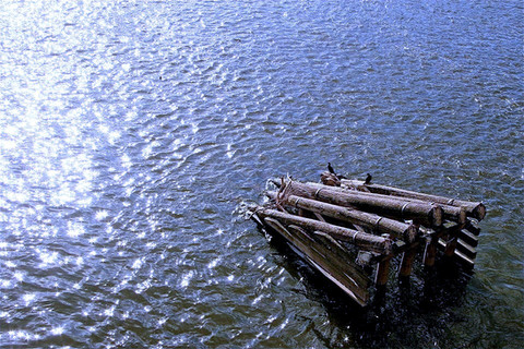 ice-guard-wooden-structure-bird-river-vl