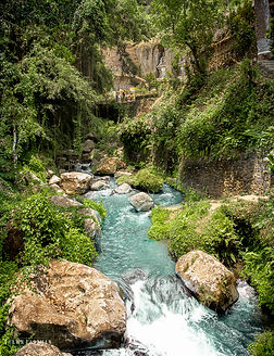 Landscape photograph of a stream running through Ubud in Bali, Indonesia