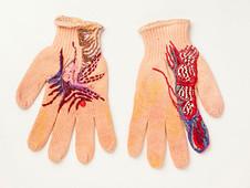 Projeto Linhas da Mão: Experiência 17