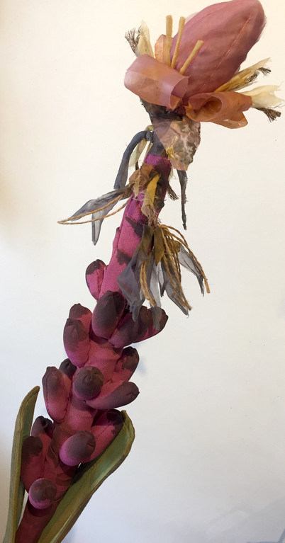 Textile plants Banana flower 1_edited.jp