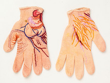 Projeto Linhas da Mão: Experiência 12