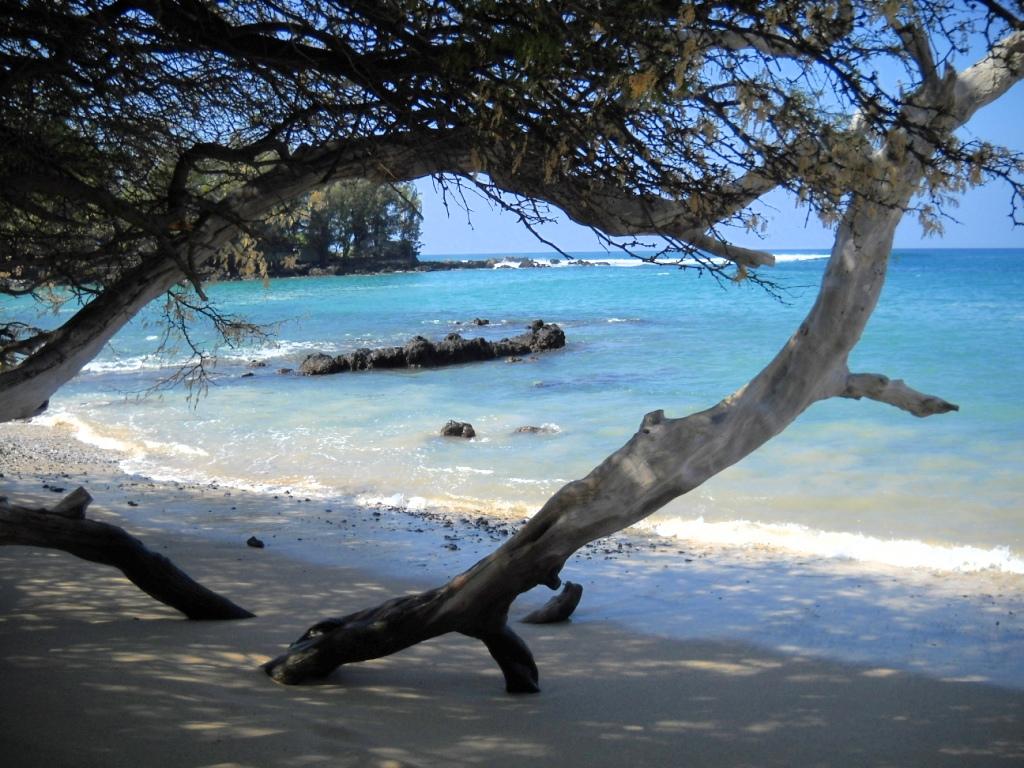 Wailea Bay - Beach 69 (5).jpg
