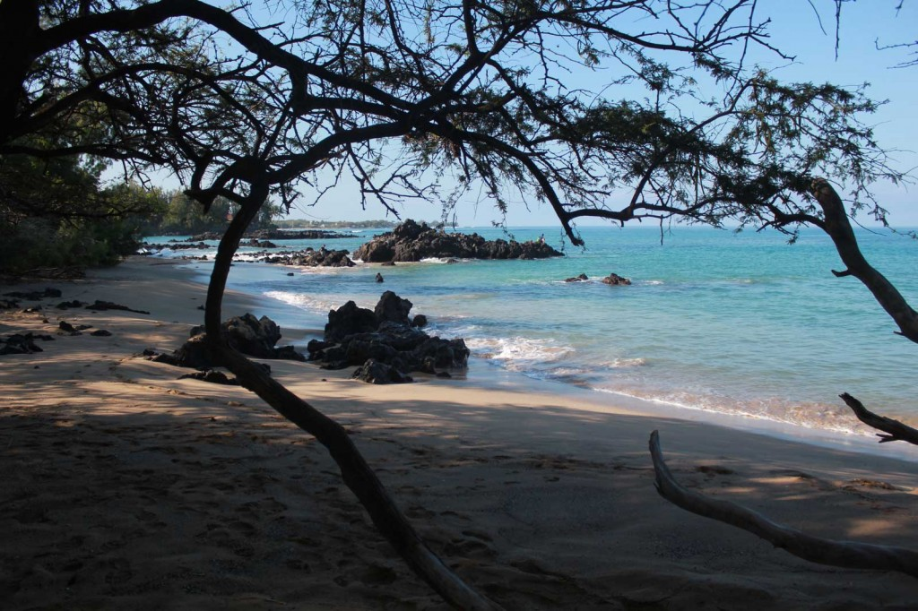 Wailea Bay - Beach 69 (8).jpg