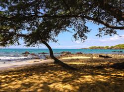 Wailea Bay - Beach 69 (10).jpg