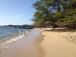 Wailea Bay - Beach 69 (3).jpg