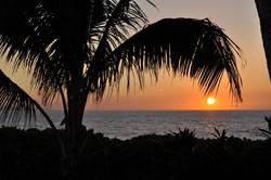Wailea Bay - Beach 69 (9).jpg