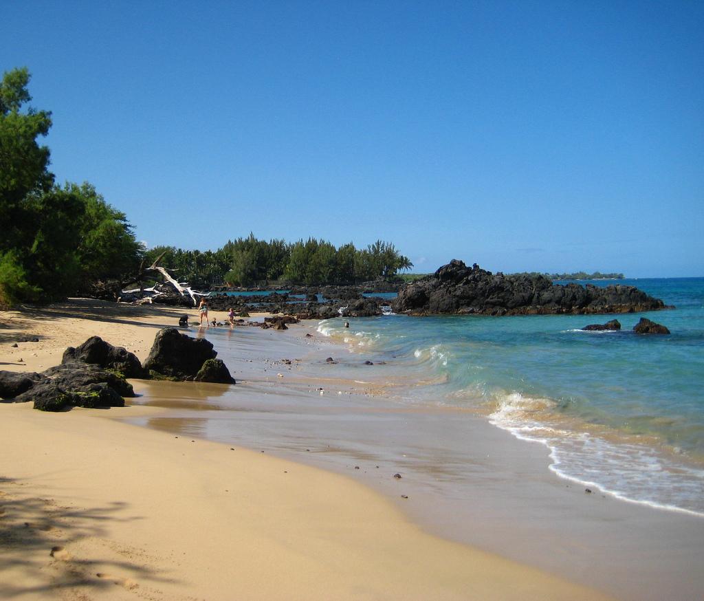 Wailea Bay - Beach 69 (6).jpg