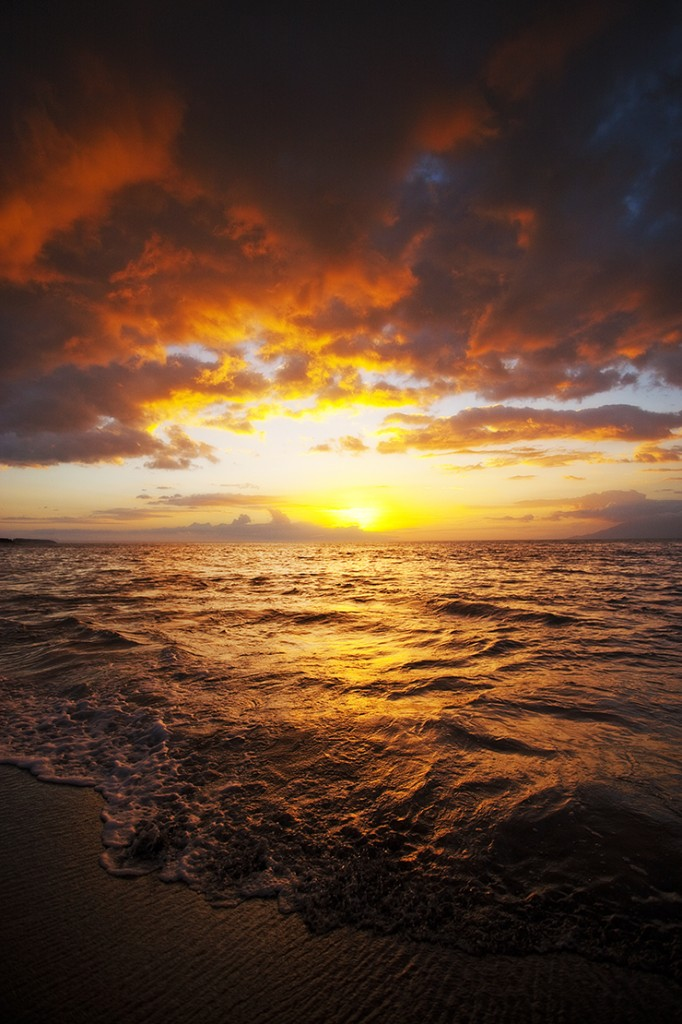 Wailea Bay - Beach 69 (11).jpg