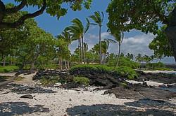 Ku-kio Beach (13).jpg