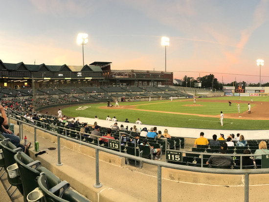 The Somerset Professional Baseball Series