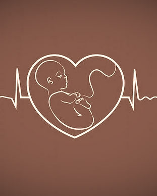 No-Heartbeat-At-6-Weeks-696x476_edited.j