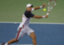 Lajovic Volley.jpg