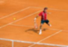 Federer Volley.jpg