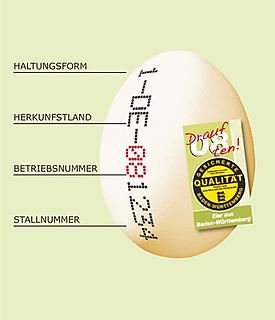 zertifizierung_bild_bearbeitet.png