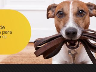Tipos de coleira para cachorro: saiba mais sobre cada uma delas