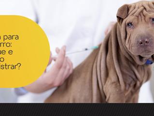 Vacina para cachorro: por que e quando administrar?