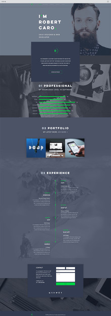 UX/UI Designer Website Template