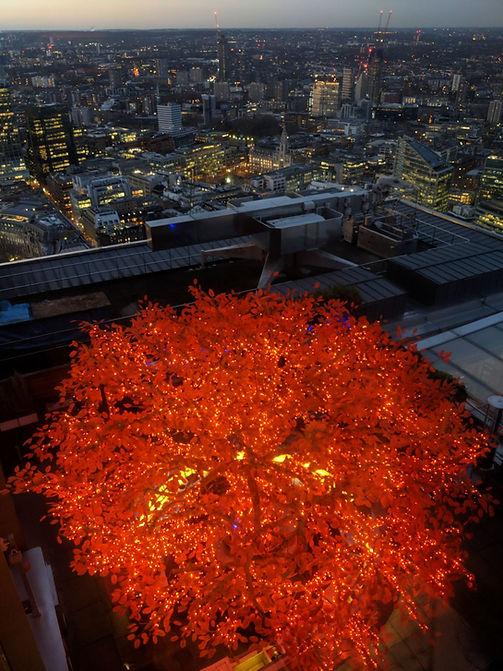 London - TeraVault Ventues
