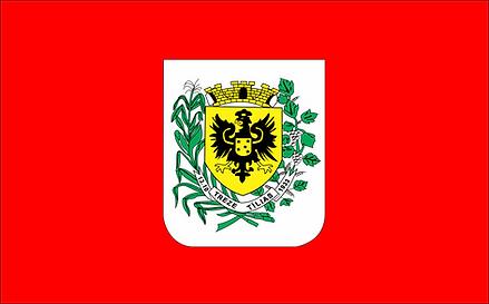 Bandeira Treze Tílias
