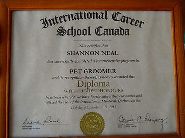 Certified Dog Groomer in Kemptville Ontario