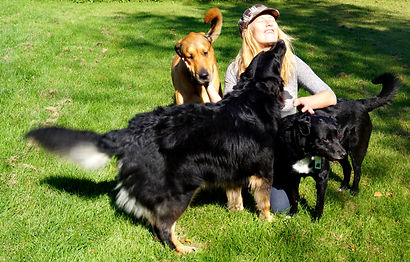 Kemptville Licensed Cage-free Dog Boarding, dog sitting, and dog grooming just 30 min south of Ottawa and just 20 min North of the 401 Hwy. Bring your dogs to Auntie Shannon's in Kemptville, Ontario