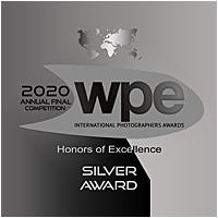 SILVER AWARD- WPE FINAL 2020