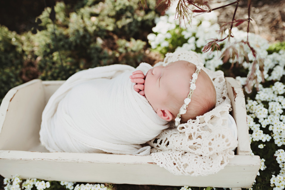 Myla {Berks County Newborn Photographer}