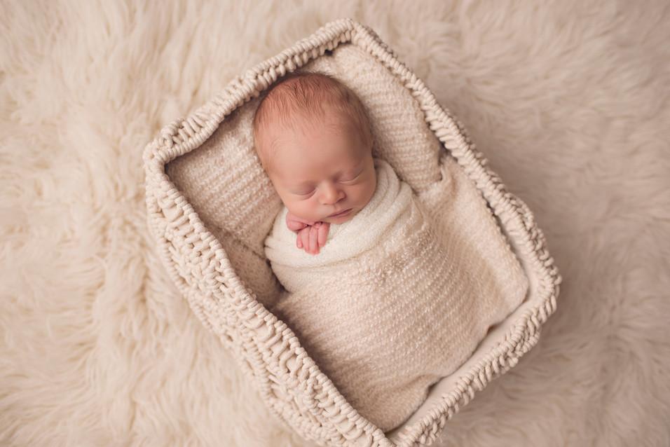 Rowen - Newborn Session - Berks County Photographer